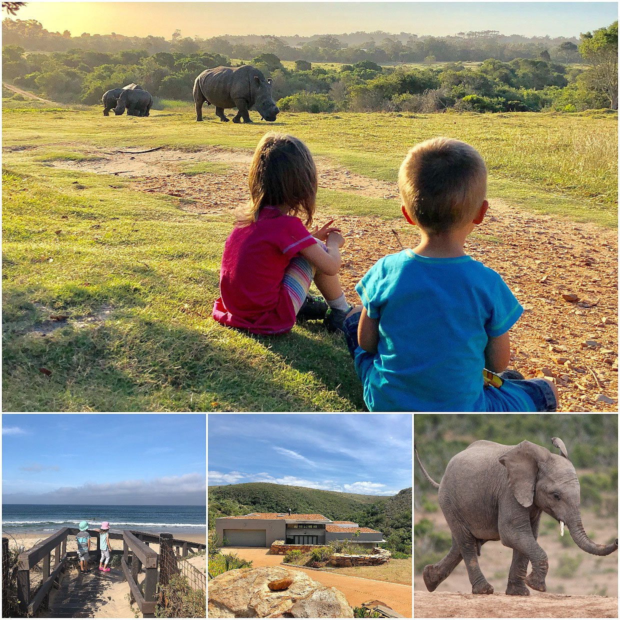 South Africa :: Wildlife viewing with Kids