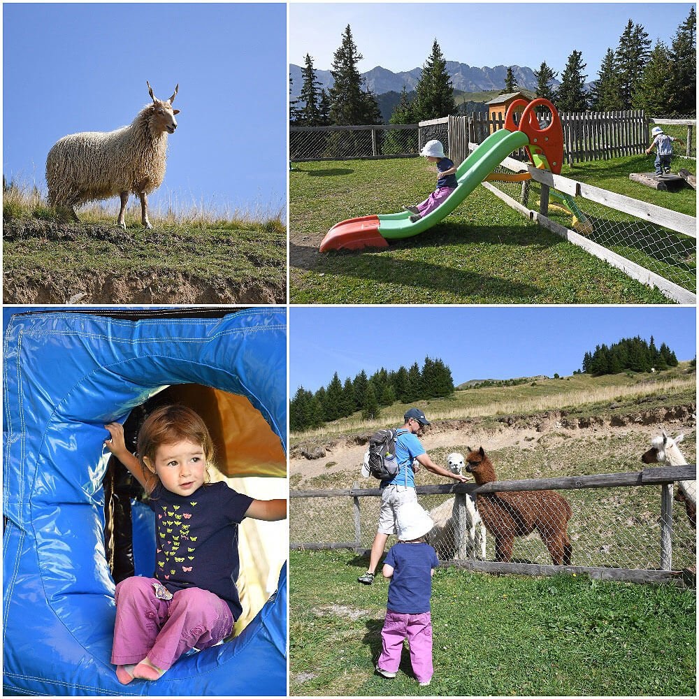 Have lunch at the Animal Parc in les Crosets