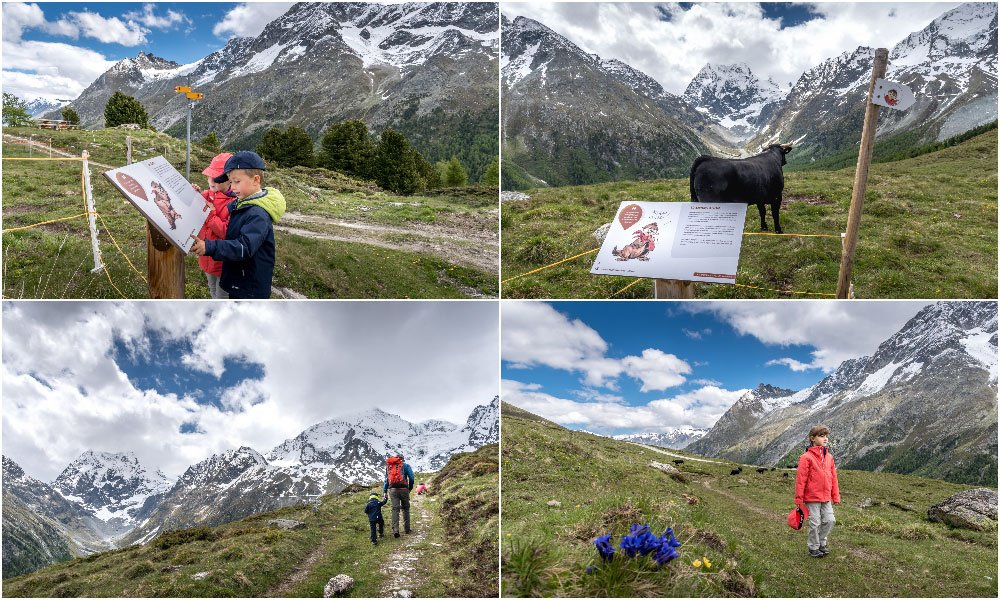 showing the different posts on the Marmot hike