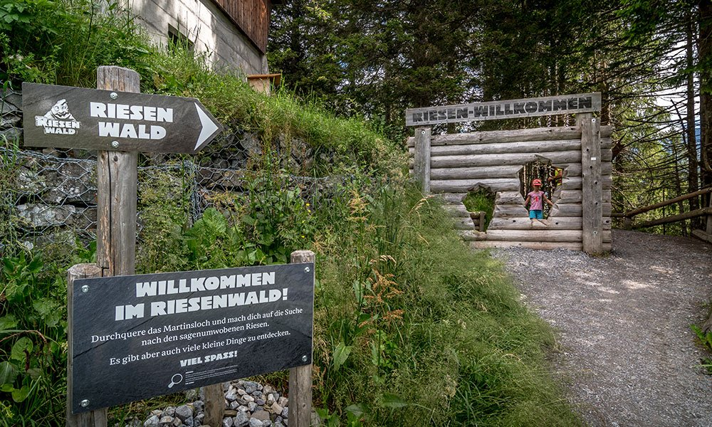 start signed of the riesenwald team trail in elm
