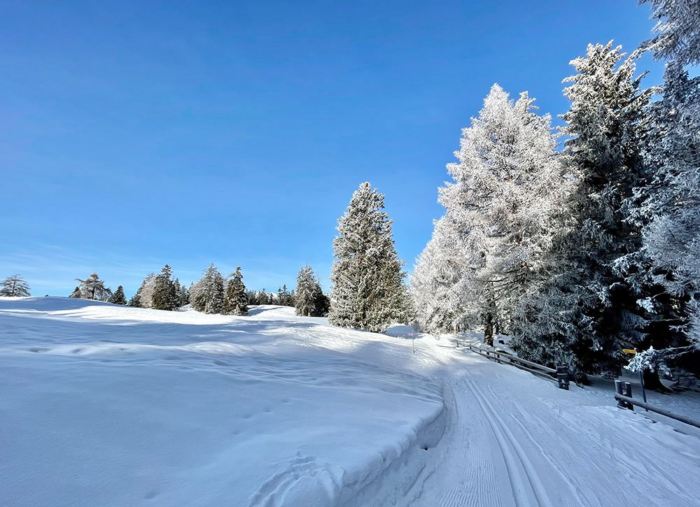 ski touring and snowshoeing track in Nendaz during winter
